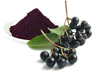 Freeze-dried Elderberry